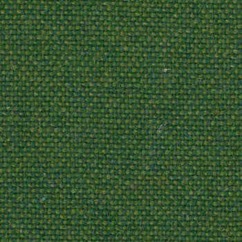 wool olive